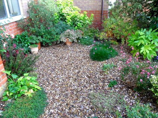 Front garden  25.10.11