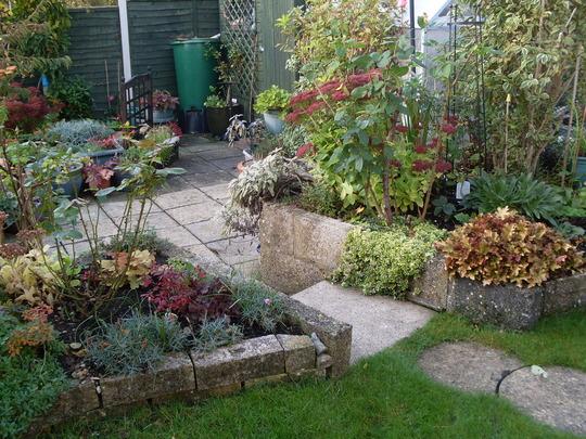 Garden 3.ll.ll.