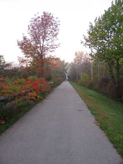 Hiking trail beside our store