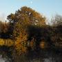 Dusk in Devon...............