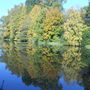 045_lake_dinton_park_28_oct_11