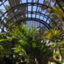 Botanical Building, San Diego - Looking West