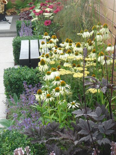Southport Flower Show 2007 - small town garden