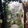 My_garden_2011_700