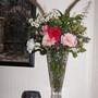 Flowers from the Garden 20 November