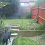 My Garden today which is 17th June 2008