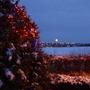 Christmas Moon 2010