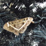 Real butterfly in artificial Christmas tree!