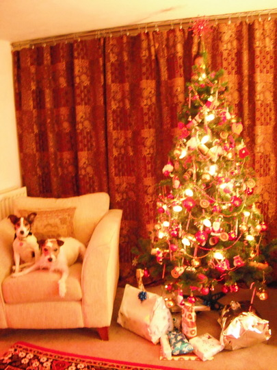 HAPPY CHRISTMAS TO ALL MY GOY FRIENDS:-)