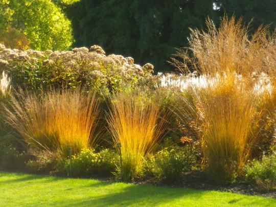 Savill Garden October 2011