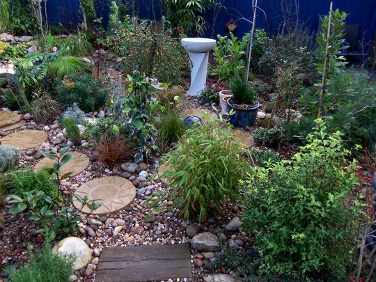 Garden December 28th