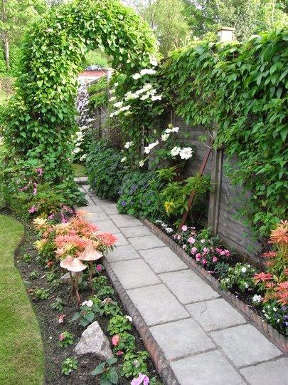Back Garden (Fallopia baldschuanica)