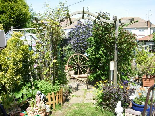 My Garden (??)