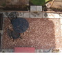 Patio_arial_view