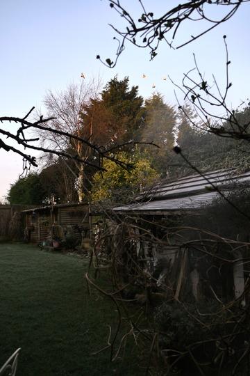 Frosty January Colours