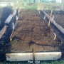 Plot 12A Raised beds #2 (After putting up boards) 27-01-2012 004