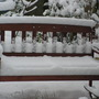 snow covered garden bench...