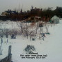 Allotment Plot under snow from top 06-02-2012 001