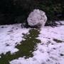 Huge Snowball