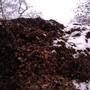 Snow on the compost heap