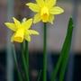 Canon_24_feb_2012_070