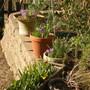 Spring_2012_007