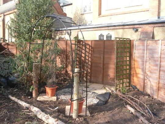 the start of the new garden!