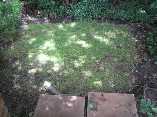 The bottom of the garden before
