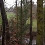 River Bollin