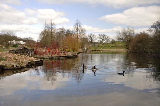 Lake at...
