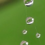 Raindrop_2