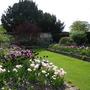 Spring Colour in Sudeley Castle's White Garden