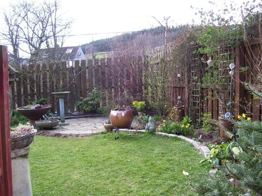Through my garden gate