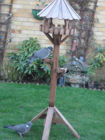 OUR NEW BIRD TABLE