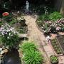My Backyard garden in 2010