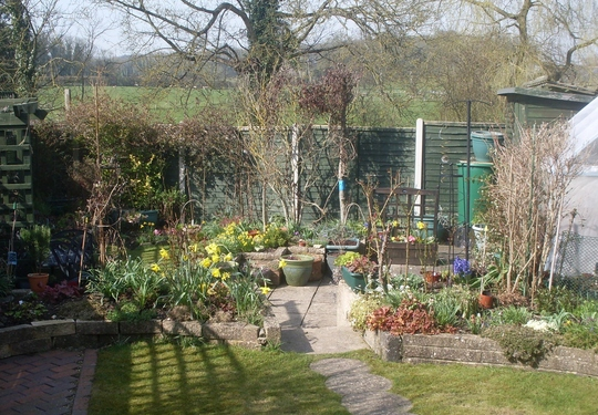 Garden in sun