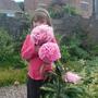 Meg_the_pink_peony_2009
