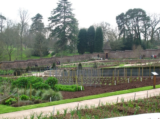 immaculate walled garden