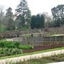 111_immaculate_garden