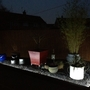 Potted area complete with LED Lights