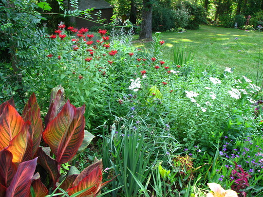 The garden's really starting to come alive this time of year.
