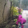 Amelie helping in the garden