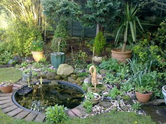 Pond Rockery Area