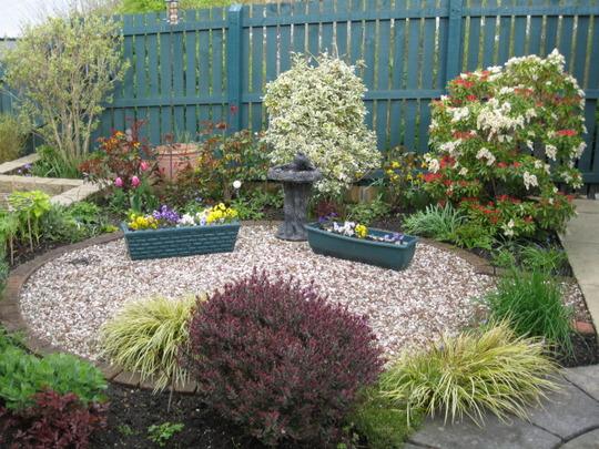 Back garden today..