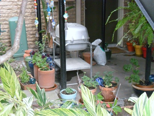Another view of my garden space.  My neighbor's grill ruins it a bit, sigh.