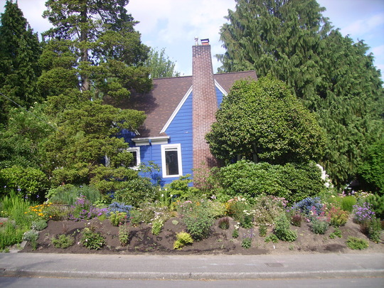 Our house and garden from across the street