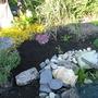 Planting_pond_area_002