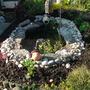 planting pond area 3