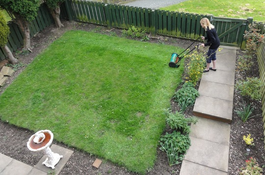 Trimming the lawn