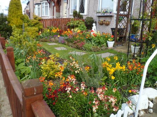 front garden yesterday